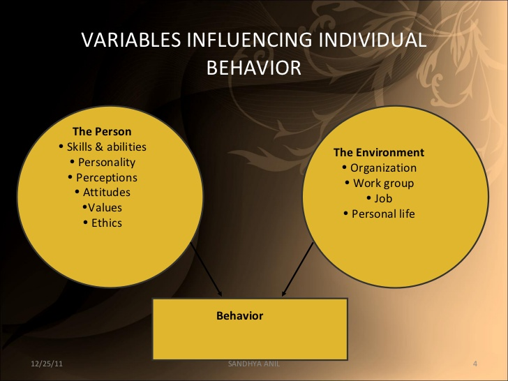 individual and group behaviour The behaviour of other people not with the individual, but in general, is also a part of his social environment similarly, every individual has a cultural background, which shapes his values and beliefs.